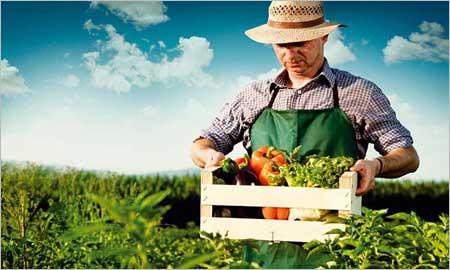 Thought for food: Πρόγραμμα στήριξης για αγρότες και κτηνοτρόφους