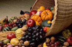 Το Θεσσαλικό καλάθι αγροτικών προϊόντων «ασπίδα» κατά του καρκίνου και των καρδιαγγειακών νοσημάτων