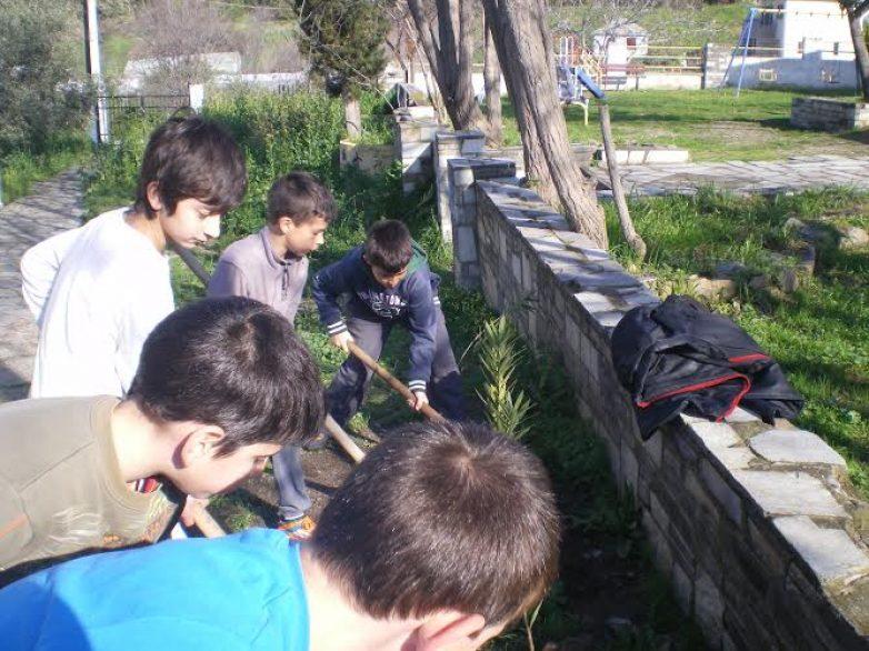 Δενδροφύτευση στο 1ο Δημοτικό Σχολείο Άνω Λεχωνίων  με την συνδρομή του Δήμου Βόλου