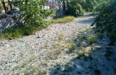 Καθαρισμός του χειμάρρου Κραυσίνδωνα