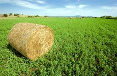 Υπογραφή  Αποφάσεων για τη συνδεδεμένη ενίσχυση αγροτών