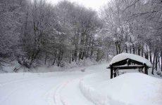 Ανοιξιάτικο χιόνι χθες  στα Χάνια Πηλίου