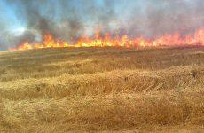 Κοινωνικό μήνυμα για τις δασικές πυρκαγιές από τη ΓΓΠΠ και το ΠΣ