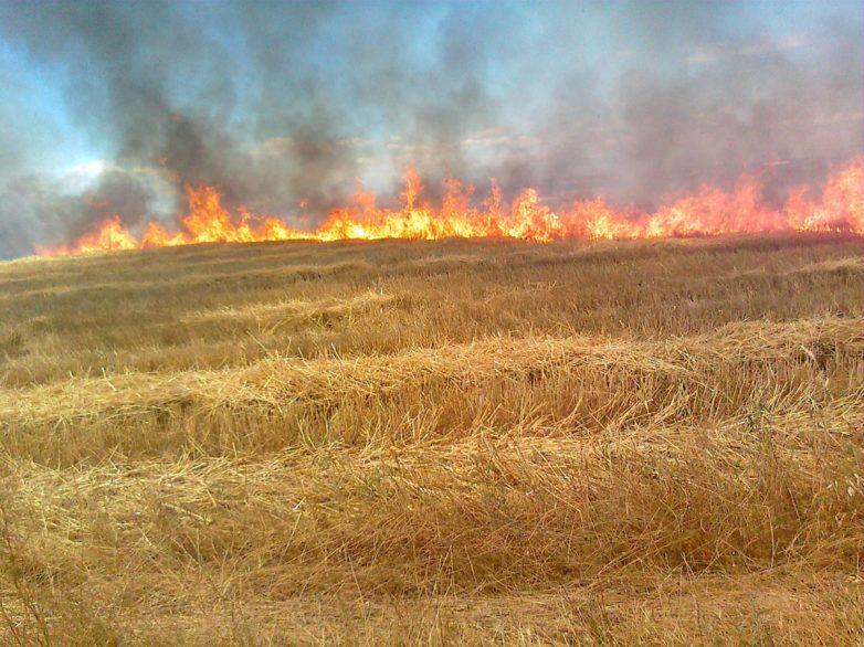 Πυρκαγιά  στα όρια Αλμυρού – Φαρσάλων
