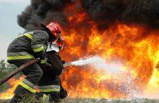 Φωτιά σε πευκοδάσος στην Κουκουράβα