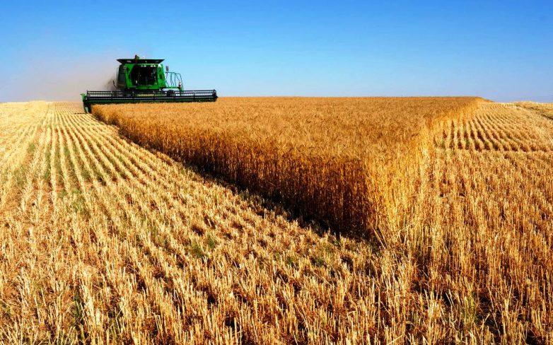 Παραλαβή σιτηρών στις εγκαταστάσεις του Αγροτικού Συνεταιρισμού Βόλου
