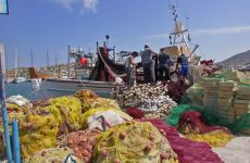 Διενέργεια Αλιευτικού Τουρισμού από επαγγελματίες αλιείς
