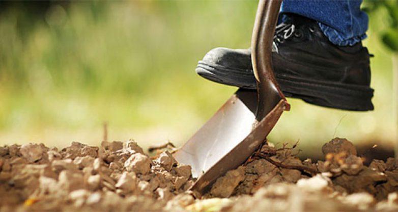 """Αποτελέσματα ενστάσεων για την προκήρυξη """"Εγκατάσταση νέων γεωργών"""""""