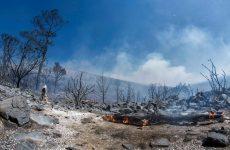 Απανθρακωμένος βρέθηκε ο αγνοούμενος αρχιφύλακας στον Καρέα – 40 σπίτια κάηκαν στη Νεάπολη