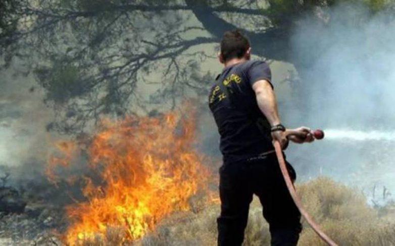 Πυρκαγιά κοντά στην κοινότητα Γκραίκα Αιγιαλείας