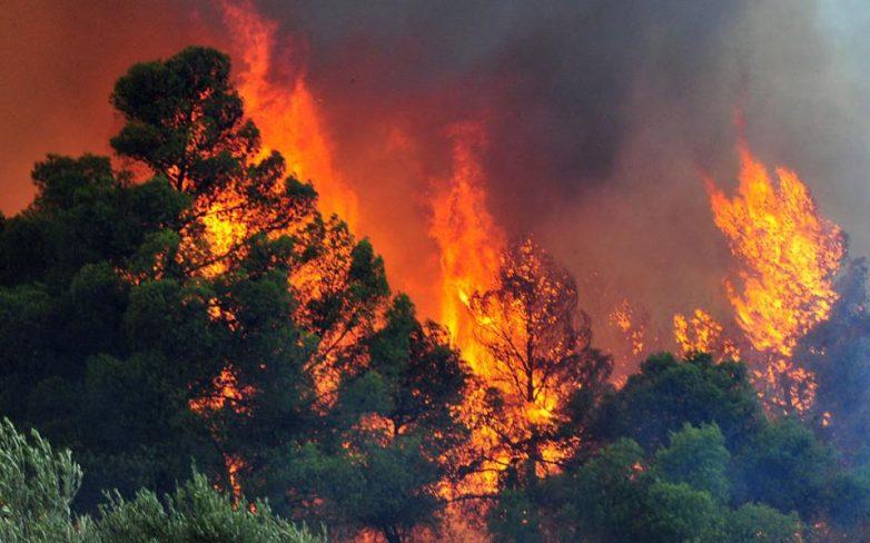 Κάηκε η πρωτεύουσα -δεκάδες οι νεκροί