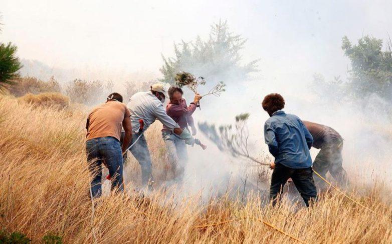 Φωτιά σε ξερά χόρτα στο Σέσκλο