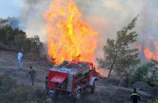 Υψηλός ο κίνδυνος πυρκαγιάς το Σάββατο