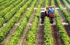 Υλοποίηση προγραμμάτων κατάρτισης αγροτών