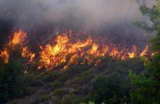Σε κατάσταση εκτάκτου ανάγκης η Ουάσιγκτον για τις πυρκαγιές
