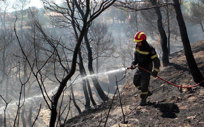 Μεγάλη πυρκαγιά στην Κέρκυρα