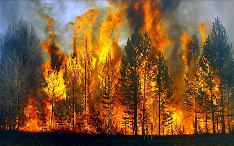 Ρωσία: Τεράστιες δασικές πυρκαγιές μαίνονται στην Σιβηρία