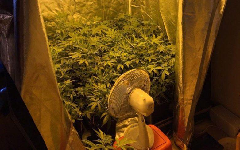 Συλλήψεις στην Εύβοια για κατοχή και διακίνηση ναρκωτικών