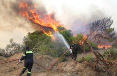 Υπό μερικό έλεγχο η φωτιά στην Σητεία