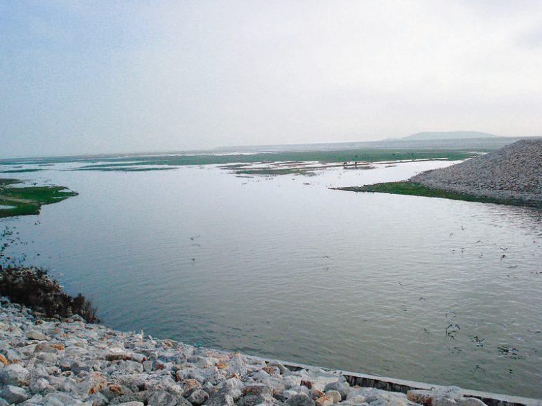 Γ. Καλτσογιάννης: Ο θεσσαλικός κάμπος αναγεννιέται μέσα από μεγάλα έργα υποδομής