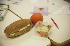 Εκπαιδευτικό πρόγραμμα  «Ο Ρομπέν των Τροφών» στο πάρκο του Αγίου Κωνσταντίνου