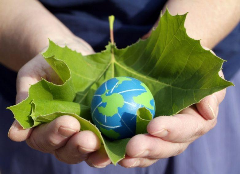 Αφιερωμένη στο θέμα της βιοποικιλότητας η παγκόσμια ημέρα περιβάλλοντος 2020