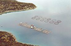 Πρόγραμμα ύψους 388 εκατ. για ενίσχυση της αλιείας και της υδατοκαλλιέργειας