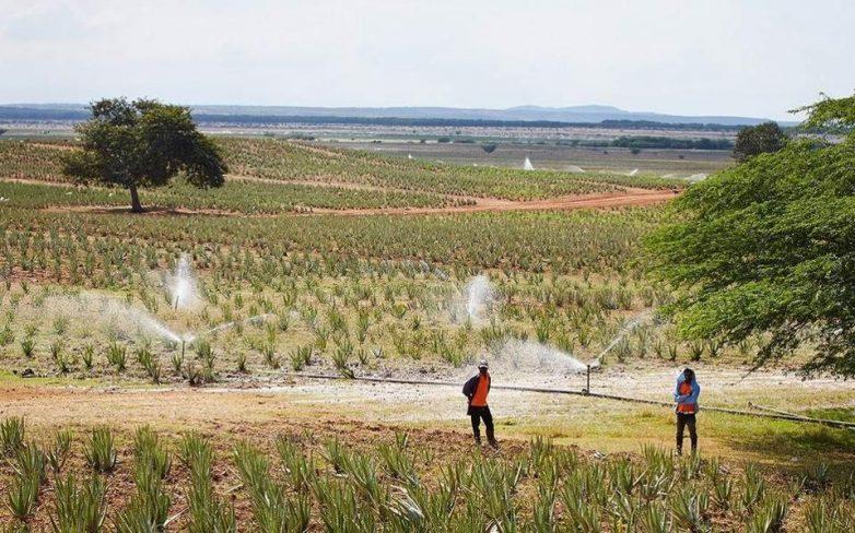 «Γεωργοπεριβαλλοντικές Ενισχύσεις » των Π.Ε. Μαγνησίας και Σποράδων