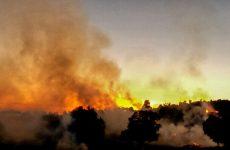 Πουρνάρια και ξερά χόρτα καίγονται στον Αλμυρό