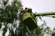 Περιβαλλοντική Πρωτοβουλία: η ίδια καταστροφική πολιτική για το πράσινο