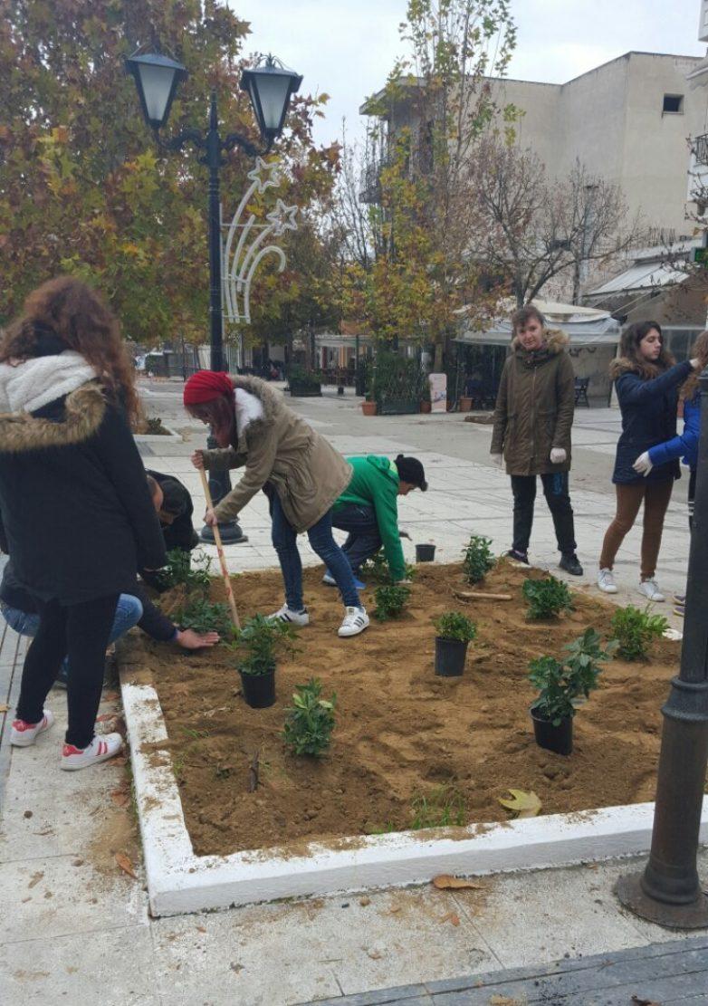 Περιβαλλοντικές πινελιές στο κέντρο του Βελεστίνου πραγματοποίησε ο Δήμος Ρήγα Φεραίου και οι μαθητές του ΕΠΑΛ Βελεστίνου