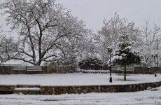 Χριστούγεννα με ζέστη, Πρωτοχρονιά «στα λευκά»