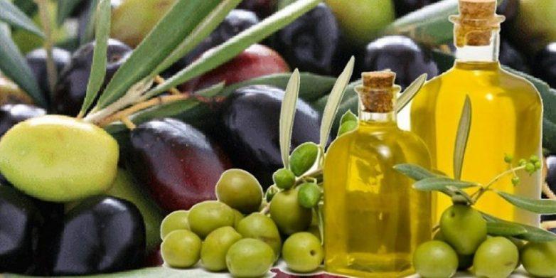 Στην Ένωση Ευρωπαϊκών Περιφερειών η Θεσσαλία με Προϊόντα Ονομασίας Προέλευσης – AREPO