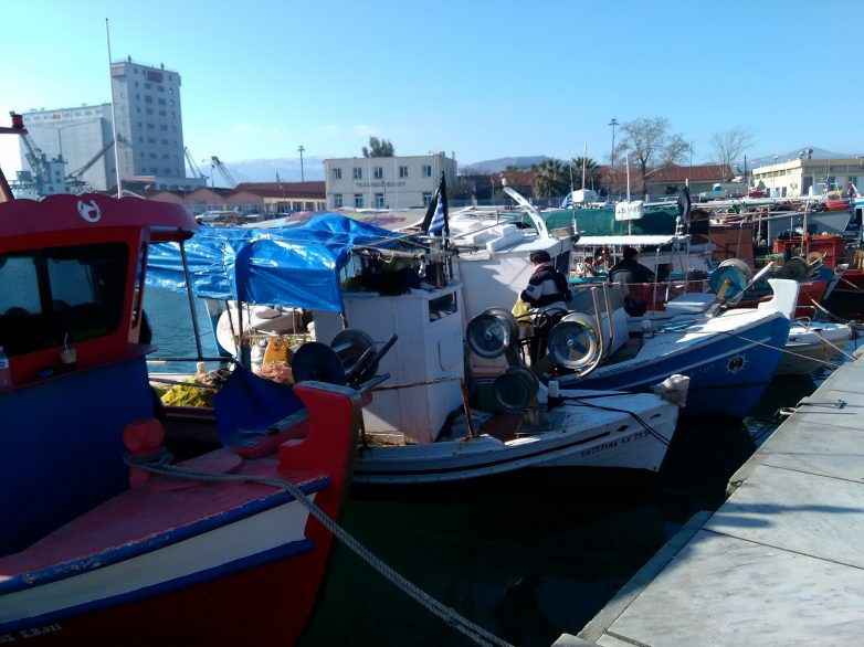 Ψήφισμα πανελλήνιας συντονιστικής επιτροπής αλιευτικών συλλόγων