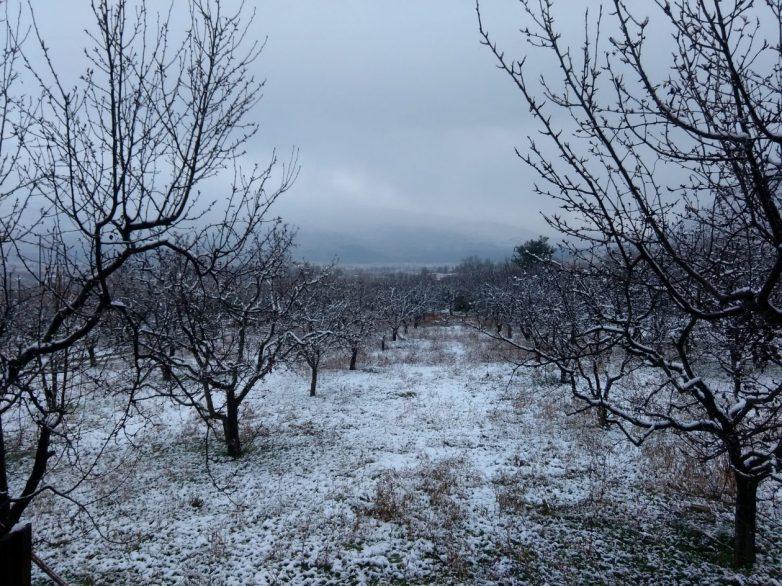 Χιονόπτωση  σε Αλμυρό, Πήλιο και Δήμο Ρήγα Φεραίου