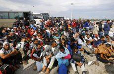 Φάιμαν: «Δεν είναι δυνατόν η Ελλάδα να δρα σαν γραφείο ταξιδίων στο προσφυγικό»