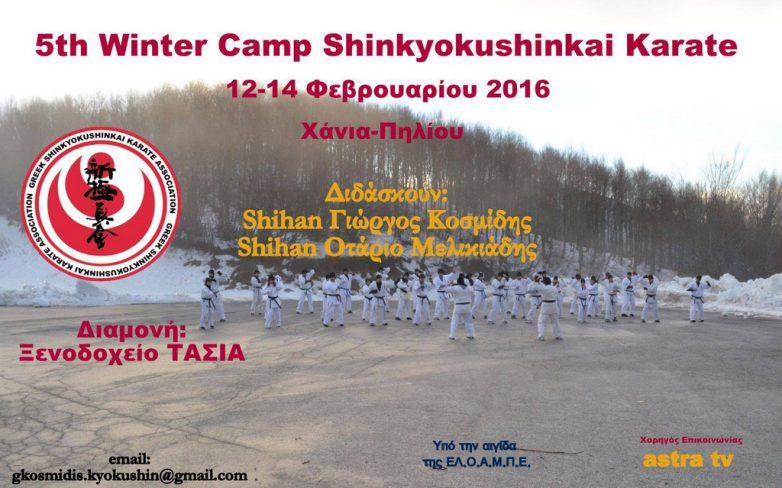 WINTER CAMP SHINKYOKUSHINKAI KARATE στο Πήλιο