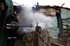 Απειλή για την παγκόσμια υγεία χαρακτηρίσθηκε η επιδημία Ζίκα
