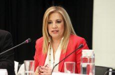 Εκλογές ζητούν Γεννηματά, ΔΗΜΑΡ, σε άλλο μήκος κύματος ο Παπανδρέου