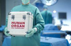 Δωρεά οργάνων   70χρονης Βολιώτισσας