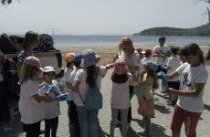 Ολοκλήρωση καθαρισμού ακτών στα Πλατανίδια