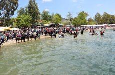 Αγιασμός των αλόγων στα Καλά Νερά