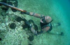 Ψάρευε με ψαροτούφεκο και χλωρίνη στις Νηές