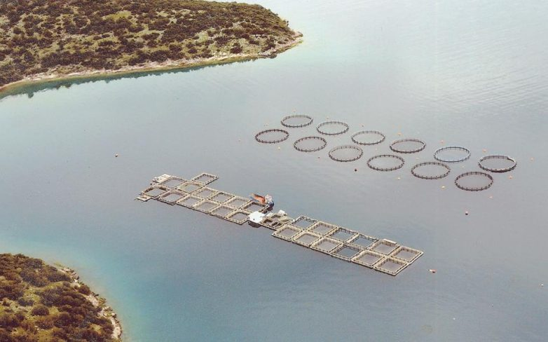 Οι ελληνικές υδατοκαλλιέργειες σε πλάνο έρευνας και ανάπτυξης