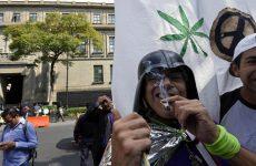 Η Κολομβία επενδύει στη…. μαριχουάνα