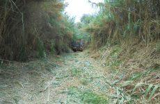 Καθαρισμός ρεμάτων από την Περιφερειακή Ενότητα Μαγνησίας