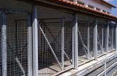 Ελεύθερη πρόσβαση αύριο στο Δημοτικό Καταφύγιο αδέσποτων στις Γλαφυρές