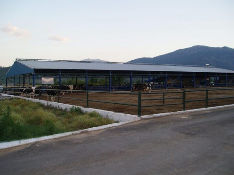 Κ. Αγοραστός: Αναγκαία η παράταση στην προθεσμία έκδοσης άδειας εγκατάστασης κτηνοτροφικών εγκαταστάσεων
