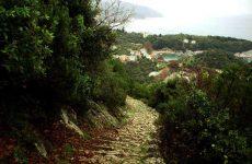 Η  «Παγκόσμια Ημέρα Βουνού» γιορτάζεται στη Μαγνησία