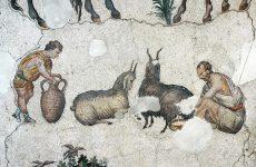 Προϊστορική Ελλάδα: Προτιμούσαν το κρέας παρά το γάλα